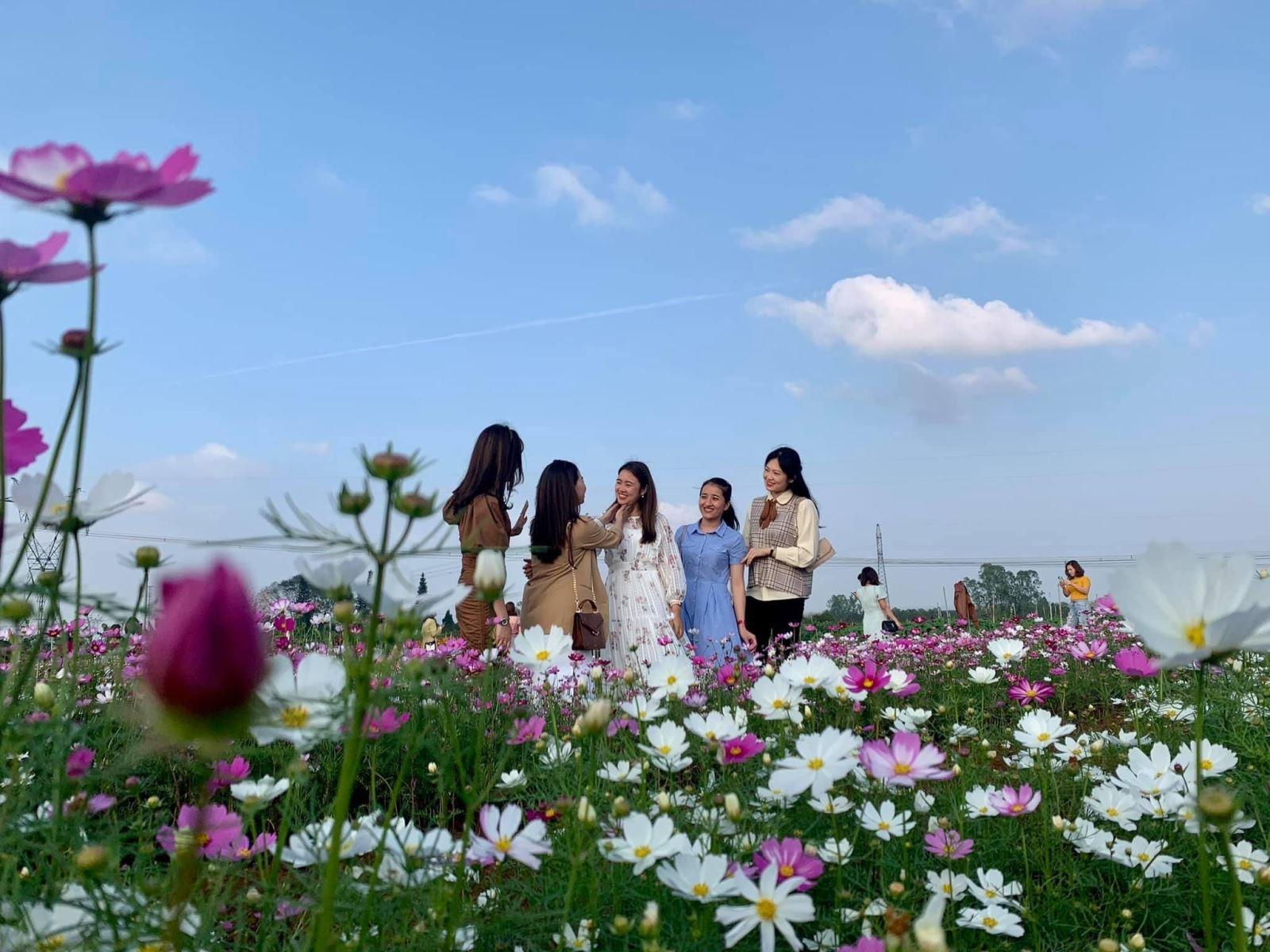Du khách chụp ảnh tại vườn hoa An Nha, xã Gio An huyện Gio Linh