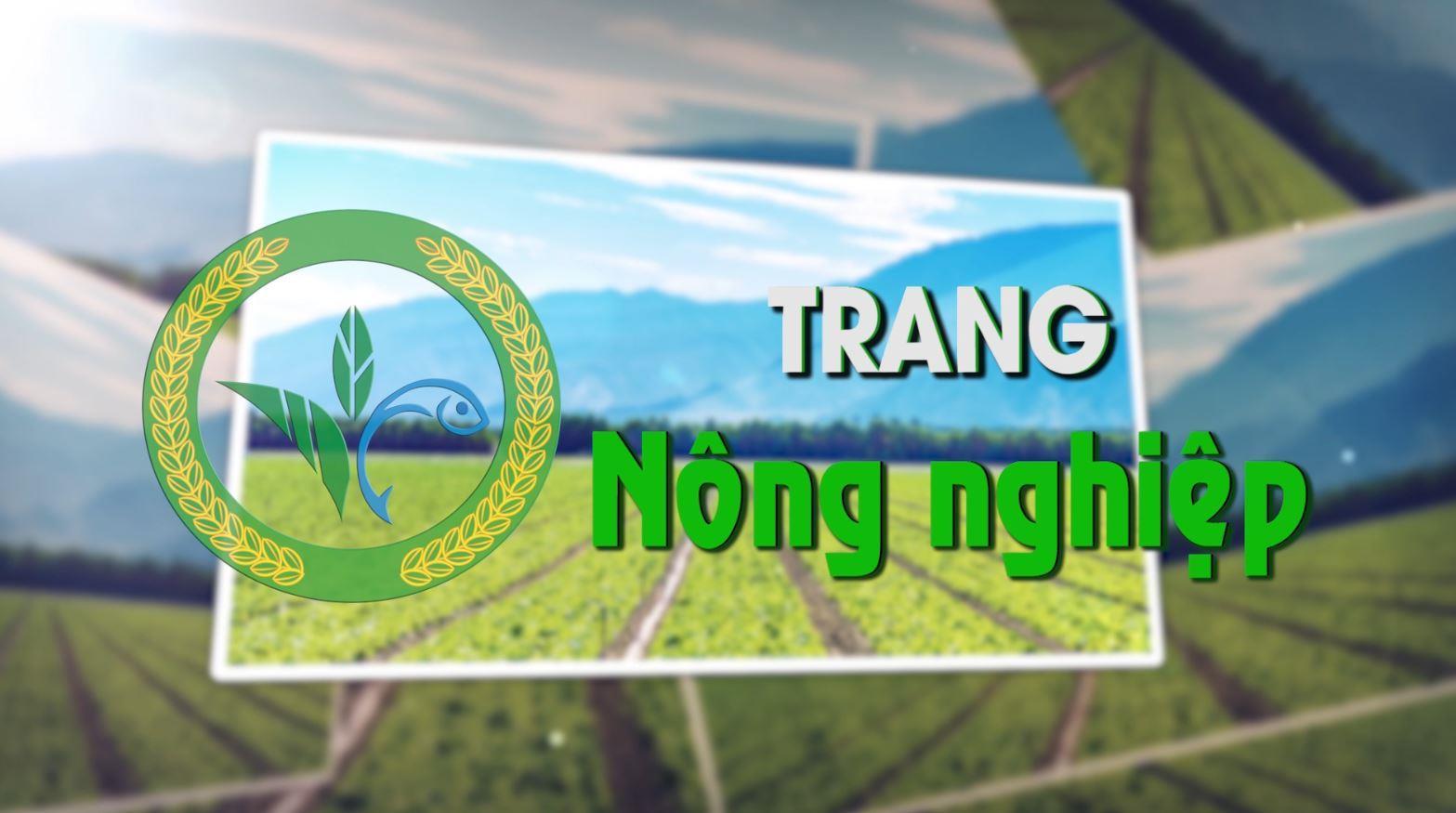 Trang nông nghiệp (28-1-2020)