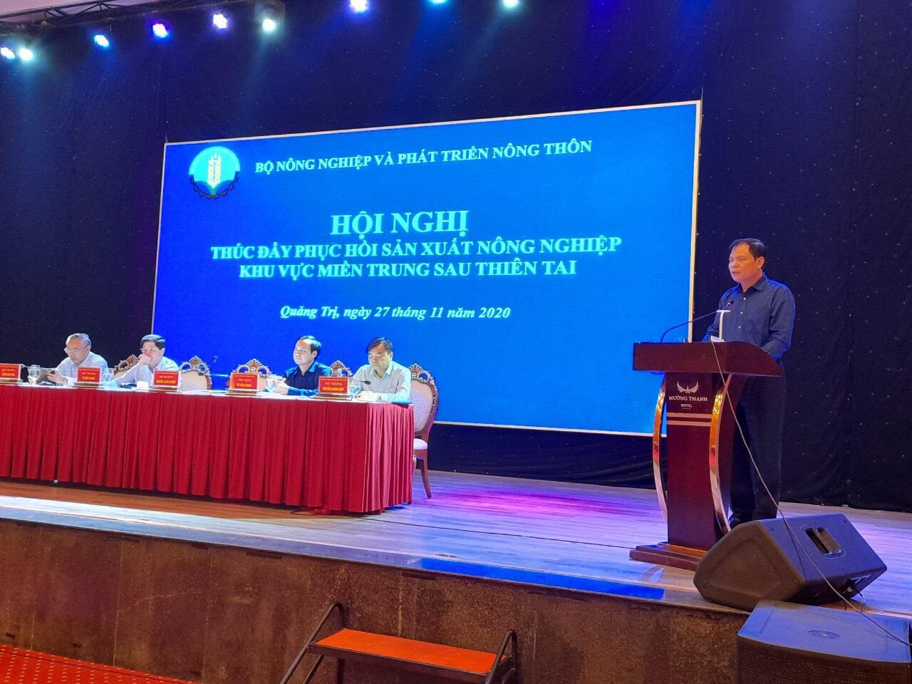 Thúc đẩy phục hồi sản xuất nông nghiệp khu vực miền Trung sau thiên tai